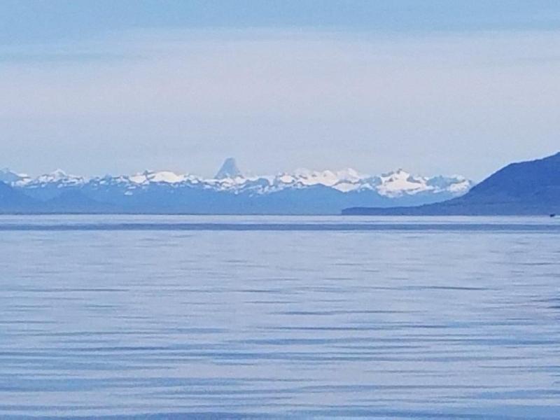 "<a href=""/node/978"">Ice &amp; Sea</a>"